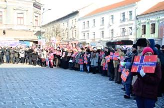 EPDH - 24.01.2016 - Manifestatie profamilie-19