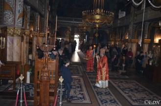 EPDH_5.04.2018_Slujire Liturghie Catedrala-8