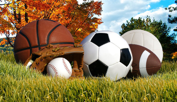 Image result for fall sports