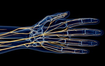 Drop the Dogma: Is it Time to Use Epinephrine for Digital Nerve Blocks?