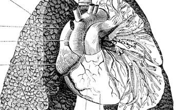 Pulmonary Hypertension: No Ordinary Case of Dyspnea