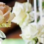 Radost z květů