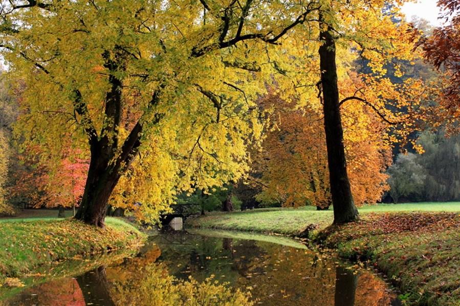 Kde je podzim nejkrásnější: Tipy na výlety po Česku