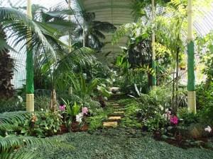 Nejkrásnější botanické zahrady u nás