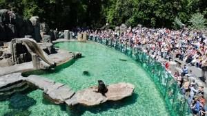 S dětmi v české zoo!