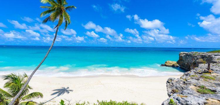 Barbados: Ostrov plný orchidejí