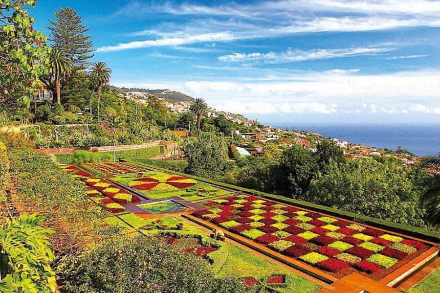 Madeira je květina uprostřed oceánu
