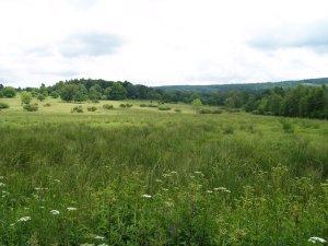 Putováním Českým lesem