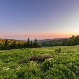Kouzelné okolí Hradce Králové: Krásy přírody a architektury na Labi a Orlici
