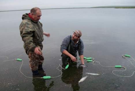 Bolshaya River, Kamchatka, Russia: Ivan Larina and Zeb Hogan with two Dolly Varden by the river. The catch is small compared to previous years. (Photo Credit: © NGT)