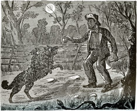 Dean Confronts the Witch, 1894, An Authenticated History of the Famous Bell Witch: The Wonder of the 19th Century, and Unexplained Phenomenon of the Christian Era by M. V. Ingram A Bell slave named Dean stated he encountered the Witch several times and that it appeared frequently in the form of a large black dog or wolf, sometimes with two heads, sometimes with no head.
