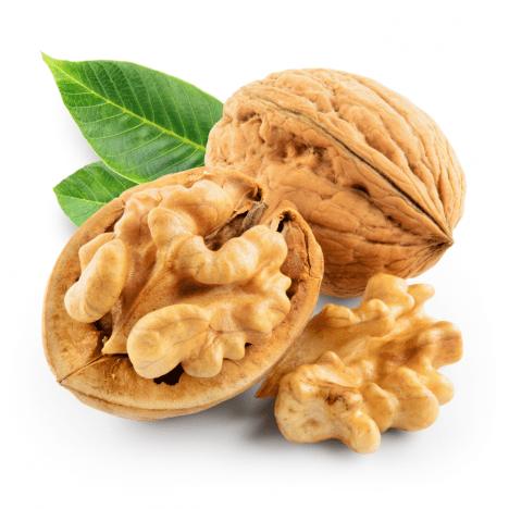 Vlašské ořechy působí pozitivně na náš mozek