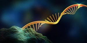 Kouzelná tři písmenka: R, N, A: Jak stojí za vznikem života?