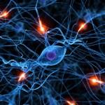 Roztroušená skleróza: Nemoc, kterou si tělo tvoří samo!