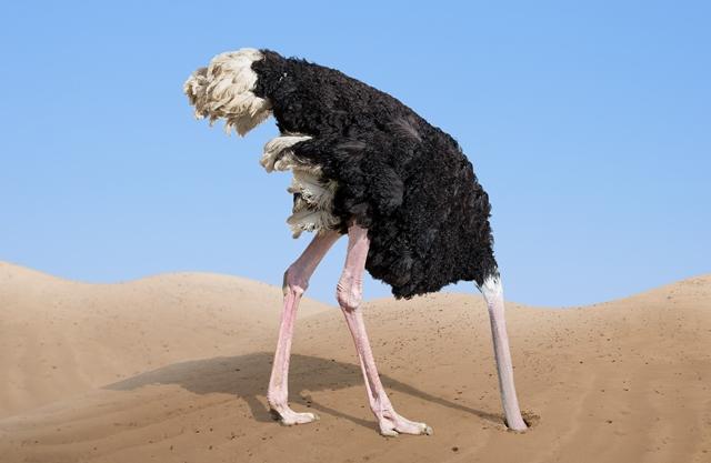 velké chlupaté ptáky tumblrobrovský černoška sex