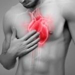 Srdce: orgán emocí a krve. Jaké nemoci jej mohou postihnout?