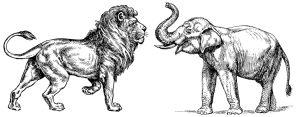 Maxmilián II. představil Čechům slona i lva