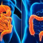 Gastroenterologové varují, aby lidé nepřerušovali léčbu