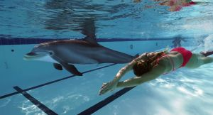 Jak si plave robodelfín?
