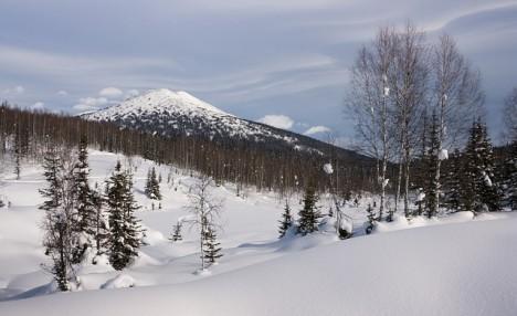Pod sněhem v sibiřském permafrostu si prý podivný tvor obrovským zuby klestí cestu.