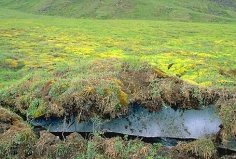 Melting permafrost in the Arctic
