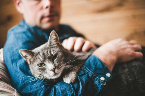 Kočky mají ve svých tlapkách pachové žlázky. Když vám přešlapuje na klíně, než se uvelebí, značkuje si tak svůj vyhlídnutý pelech. Stejné žlázky mají kolem úst, itěmi si označují území. Dalším druhem značkování, které používají kocouři, je moč. Vědci mimo jiné zjistili, že kočičí moč obsahuje fosfor. Ten vnoci světélkuje apodle některých odborníků není vyloučeno, že si tím kočky značí cestu ve tmě, protože jejich citlivý zrak světélkování zachytí.