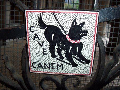 Cave canem, pozor na psa. Kvůli vzteklině budí psi velký respekt.