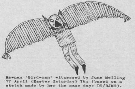 12letá dívka June Melling tajemného tvora dokázala nakreslit.