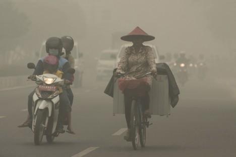 V minulém roce se vypalování pralesů vymklo kontrole a oheň, který pohltil tisíce hektarů lesa, denně vyprodukoval tolik kouře jako celé Spojené státy.