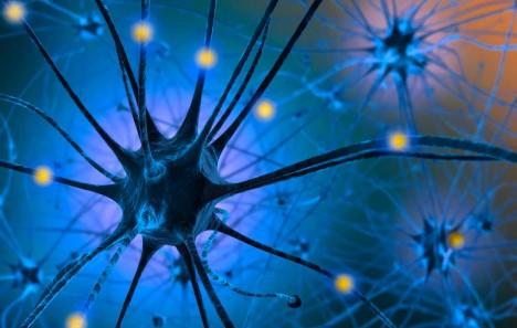 Základem je jíst potraviny, které podporují produkci serotoninu v našem těle, v mozku totiž působí jako hormon štěstí.