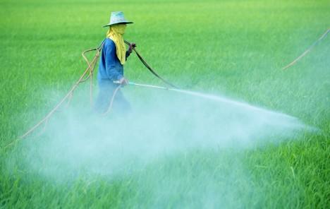 Včely dlouhodobě ohrožují nejrůznější postřiky a chemikálie používané v zemědělství.