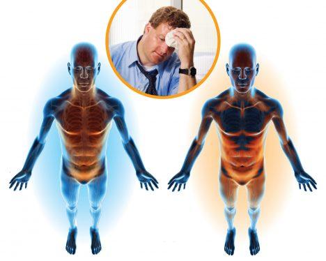 Pro naše tělo je velmi důležité rozeznávat teplo achlad. Naše orgány musí tělo uchovávat ve správné teplotě, aby dobře fungovaly aupozorňovat na extrémy, které by je mohly poškodit. Vnější teplotu detekujeme pomocí zakončení nervů vkůži, tu vnitřní hlídá část mozku zvaná hypotalamus. Při přehřátí například náš mozek vydá pokyn vytvářet pot, při chladu vyvolá třes.