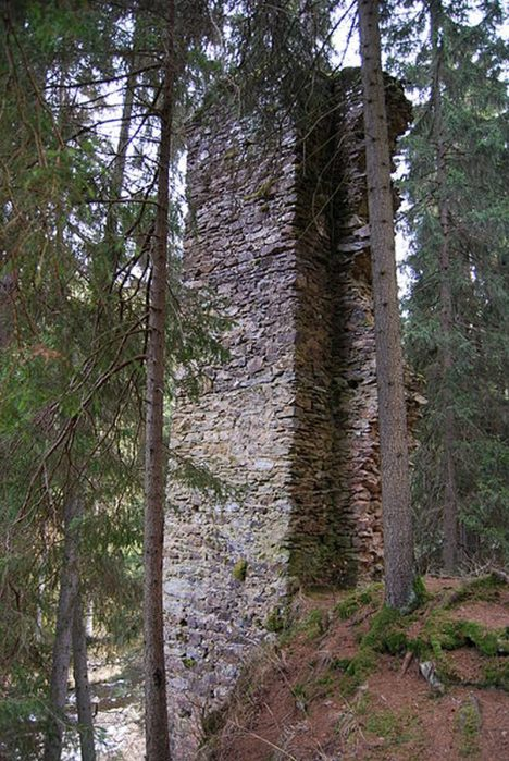 Hus_-_zřícenina_hradu_(12)