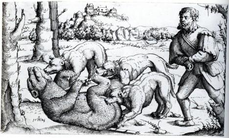 Lov medvědů je v Americe oblíbenou zábavou.