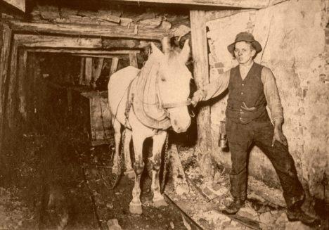 Ostrava - doprava voziku konmi 1900 - ed