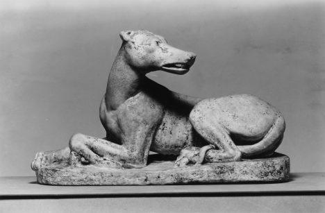 Psi to ve starém Římě nemají jednoduché.