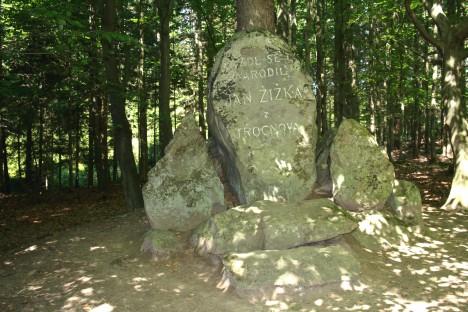 Z dubu, pod kterým se údajně narodil bojovník Jan Žižka, už dnes nic nezbylo.
