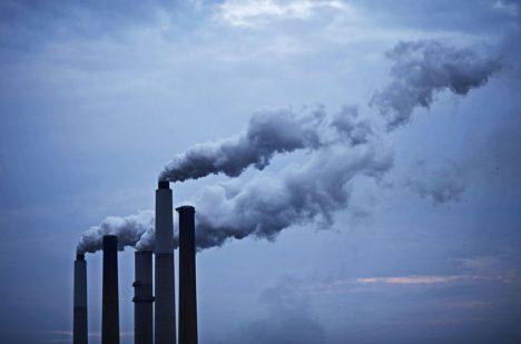 K rychlé proměně klimatu podle dominantní vědecké teorie přispívá dnes i člověk. Hrozí další velké vymírání?