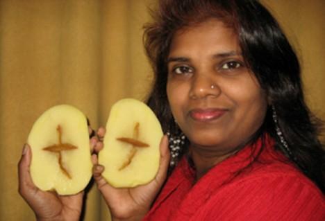 potatocross