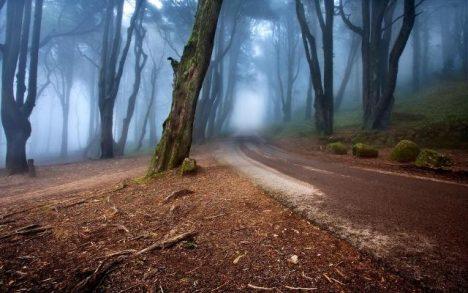 tajemná mlha
