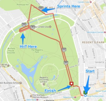 regent_s_park_and_primrose_hill_hiit