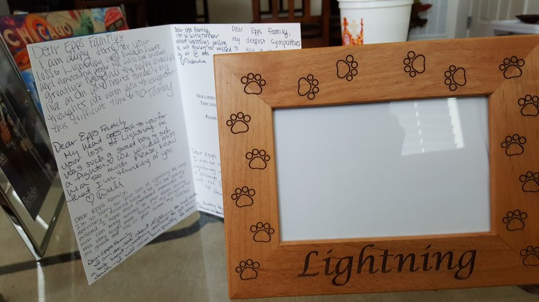 Card and picture frame
