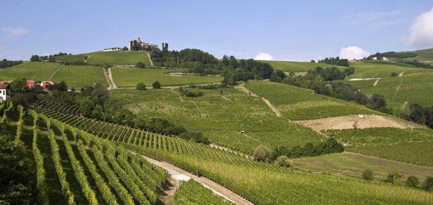 Weekend tra Langhe e Monferrato: cosa vedere e cosa fare