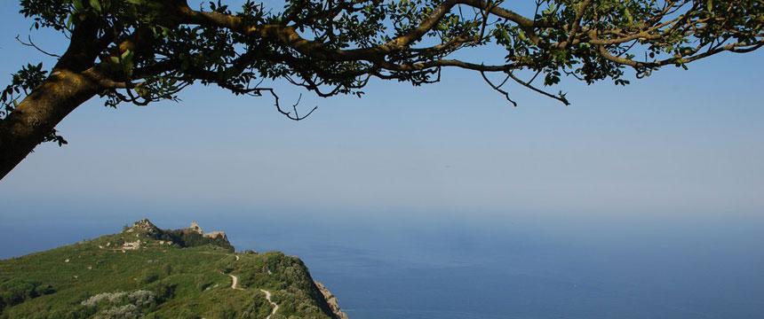 Viaggio a Ischia tra mare, borghi e terme