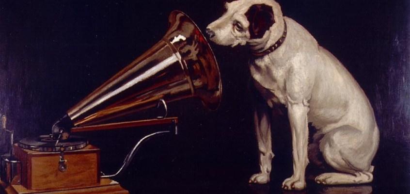 Musica rilassante per cani: quali sono i benefici?