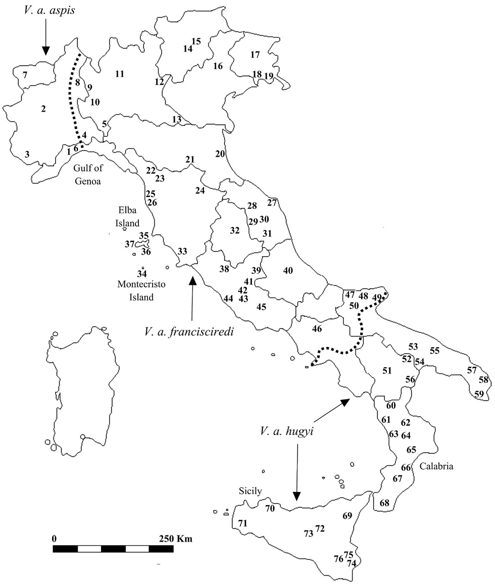 Molecular phylogeography of the asp viper Vipera aspis