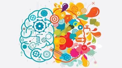 2015 csiblog embracing passion creativity 883x432 - Economia criativa: uma realidade inovadora