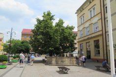 Legnica-049
