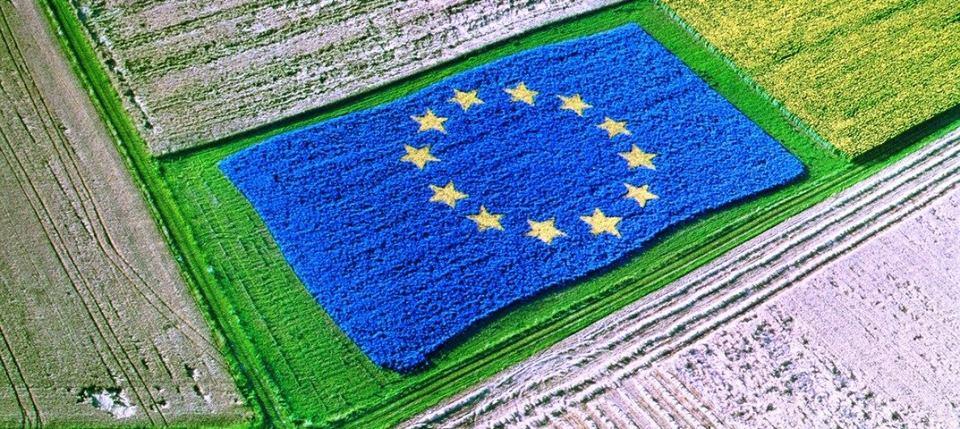 Η βουλευτής Μπ. Σκούφα για τις προτάσεις αναθεώρησης της ΚΑΠ: Η Ευρωπαϊκή Ένωση αποδεικνύεται άτολμη