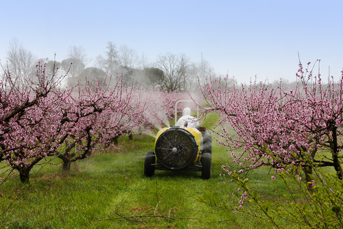 Pesticide legislation in the EU: Towards sustainable use of plant protection products